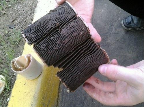 Как часто и через сколько нужно менять топливный фильтр? Сроки и полезная информация