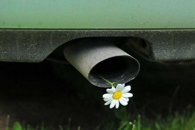 Как узнать экологический класс автомобиля? Простые способы и дельные советы
