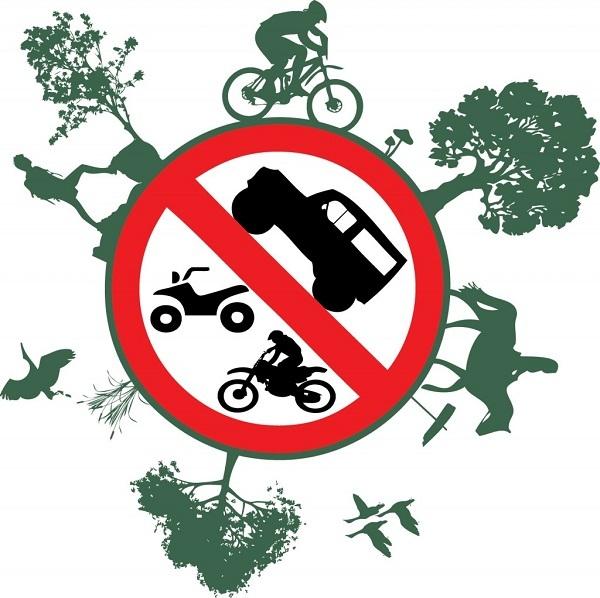 Зачем занижать машину? Тазоводы против иномарок